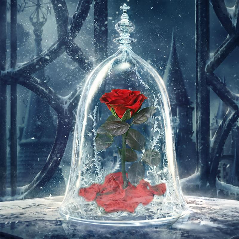 2019 New Dream Romantic Eternal Life Flower Finished Glass Cover Beauty And Beast Rose Christmas Valentine's Day Gift