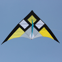 290*135cm Wide Single Line Stunt Kite Children Adults Delta shape Triangle Fly Kite Flyer for Beach Vacation Family Fun