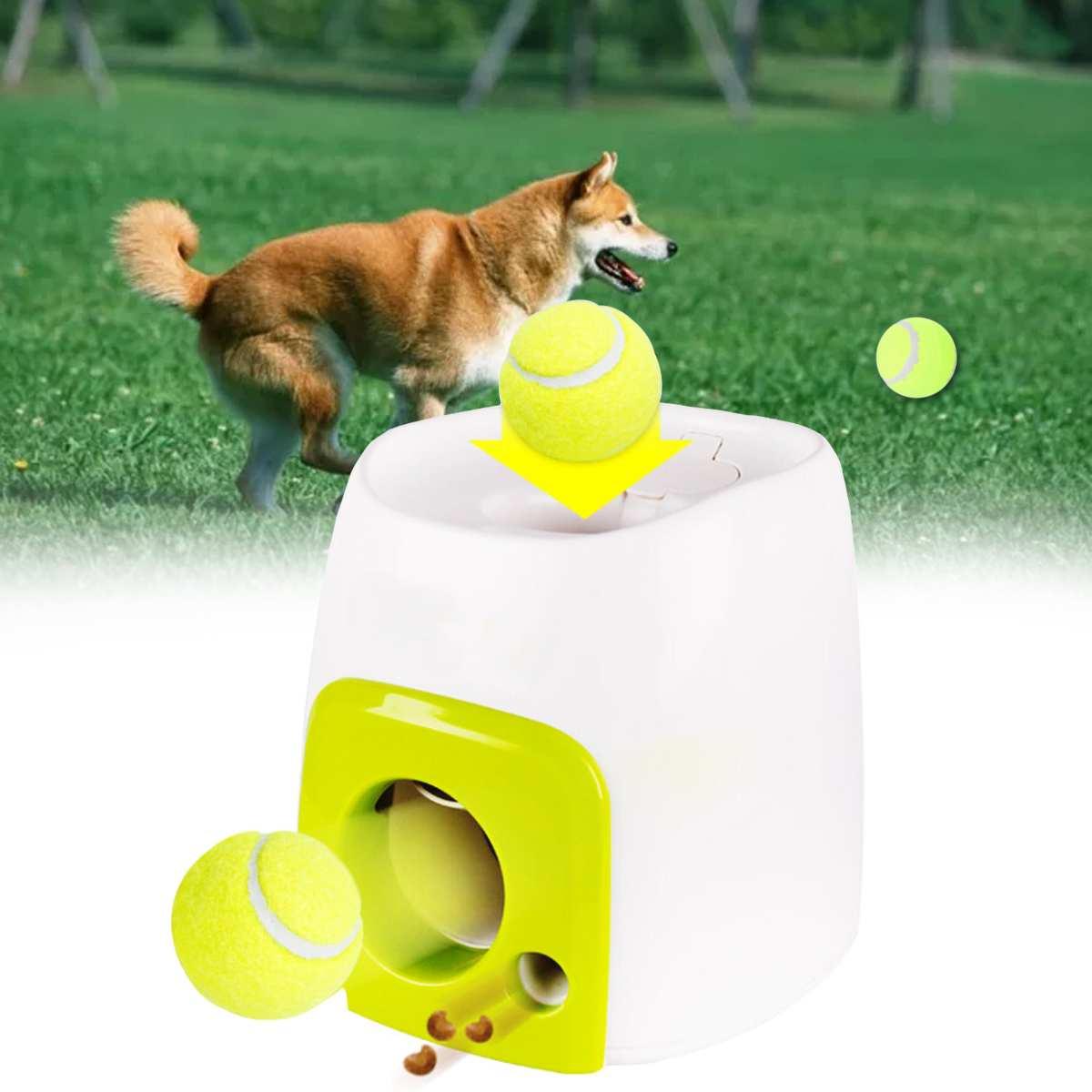 Jouets pour animaux de compagnie de lanceur de Tennis de balle interactif automatique jetant l'émission de dispositif de jet de balle d'animal familier de Mmachine avec la boule