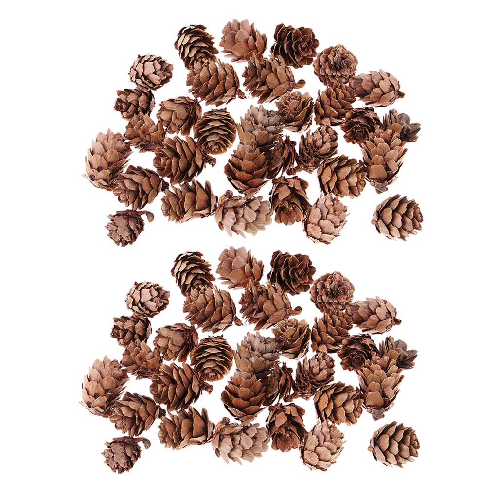 60 Pieces Mini Decorative Pinecone Pine Cones Pinecone For Christmas Tree Toppers Vase Bowl Filler Displays Crafts Home Decor