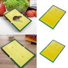 strong Useful Mouse Board Sticky Rat Glue Trap Mouse Glue Board Super hard Mice Catcher Trap Non-toxic Pest Control Reject(China)