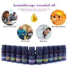 Natural Essential Oil Aromatherapy Diffusers Air Freshening Dropper Humidifier Flower Fruit Relax
