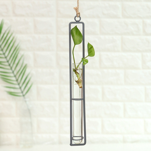 Image 2 - Iron Wall Hanging Flower Pots Mini Flowerpot Garden Glass Hydroponics Transparent Hanging Flower Bottle Home Room Decor