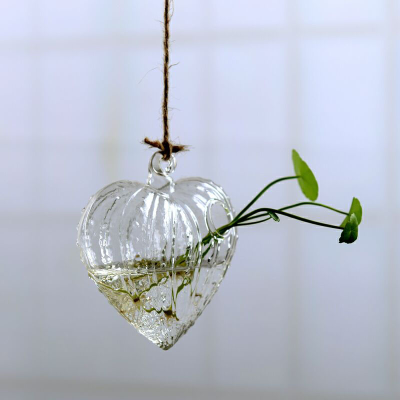 Clear Terrarium with Rope Made with Borosilicate Glass Ideal for Bedroom/Living Room and Office 2