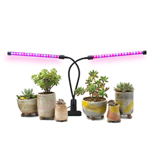 12W Dual Head Timing Grow Lamp 36 LED Chips with Red/Blue Spectrum for Indoor Plants Adjustable 3/6/12H Timer 5 Dimmable
