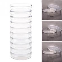 Dishes Chemical-Instrument Petri Sterile 35mm for Microorganisms-Cell Clear -20 10pcs