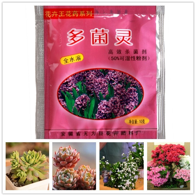 1 Bag Carbendazim Bulbs Plants Rooting Growth Hormone Drugs Sterilization Pesticides Fungicides Insecticides Pharmacy Fertilizer