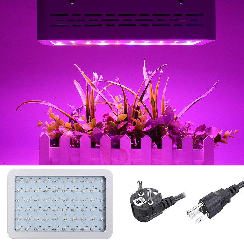 LED à spectre complet élèvent la lumière 300 W 60 LED s éclairage d'usine Fitolampy pour la serre d'intérieur poussent des plantes de tente poussent lumière LED