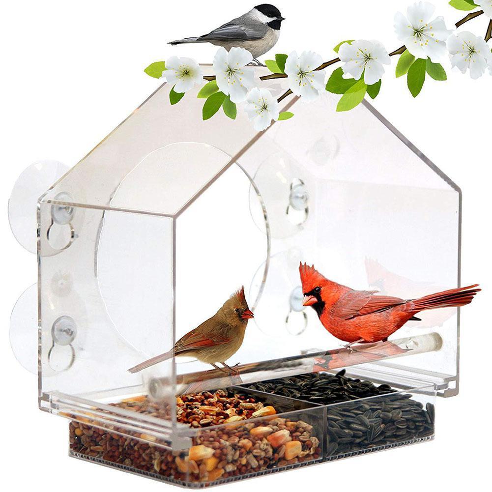 Mangeoire pour oiseaux transparente acrylique Adeeing avec Cage à oiseaux suceurs pour décoration de jardin d'arbre
