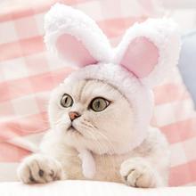 Милая собака кошка Hairwear домашнее животное Рождество Кролик Аксессуары для ушей головной убор день рождения костюм головной убор кошки шапка шляпа