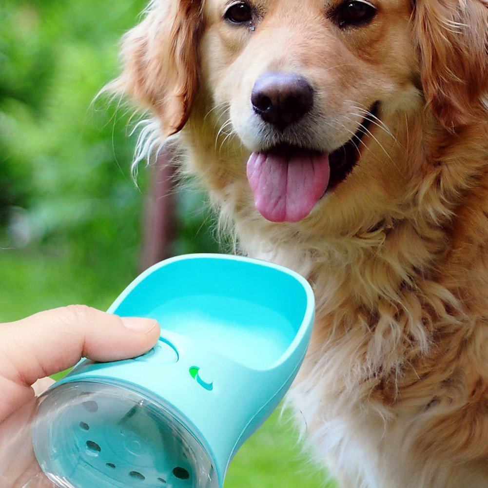 Portable Dog Water Bottle Cat Puppy Drinking Bottle Pet: Portable Pet Dog Water Bottle For Dogs Travel Puppy Cat