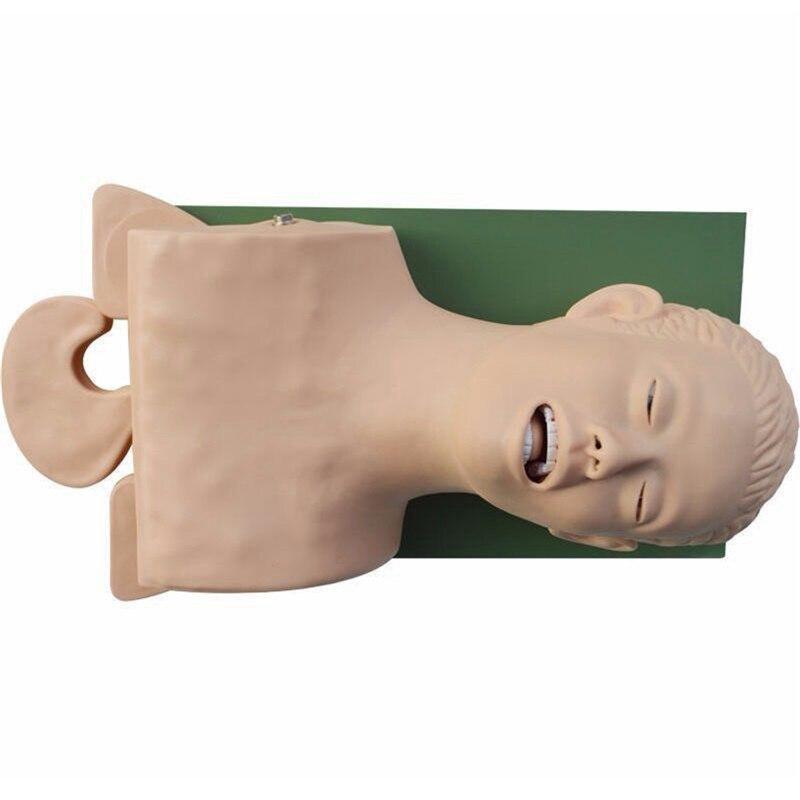 220 V modèle d'enseignement de mannequin d'intubation modèle de gestion des voies respiratoires en PVC - 3