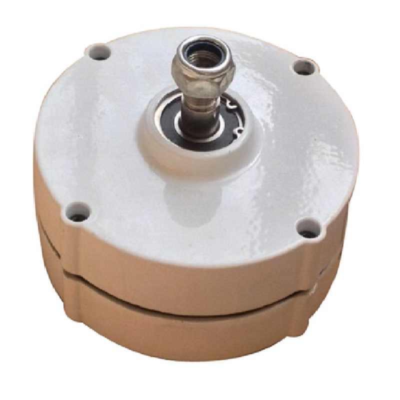 Mini générateur à aimant permanent 100w 200w 12v 24v 48v | Petit générateur à aimant permanent, génératrices ac pour le bricolage, turbine à vent ou turbine à eau