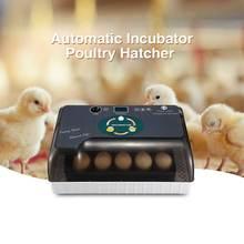 Практичные яйца большой емкости мини инкубатор для курицы птицы перепелиных индейки домашнего использования автоматический поворот яиц