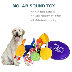 18pcs Fun Compartments Dogs Grind Teeth Bite Toys Sound Screaming Chicken Dog Bell Horn Pet Toys