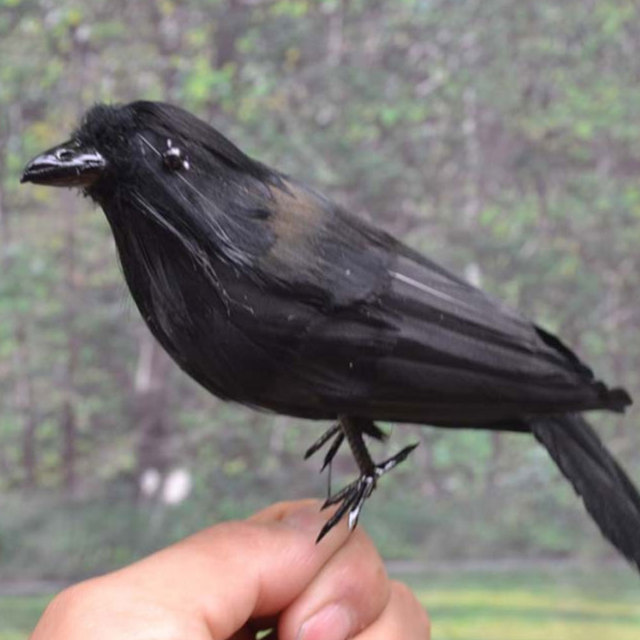 Crow Props Halloween Lawn Vivid Feathered Bird Realistic Garden Hunting Accessries Simulated Crow Farm Ornaments Hunting Decoy