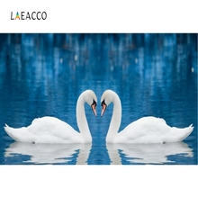 Laeacco Love Heart Swans Water Backdrop Photography Backgrounds Customized Photographic Backdrops For Photo Studio