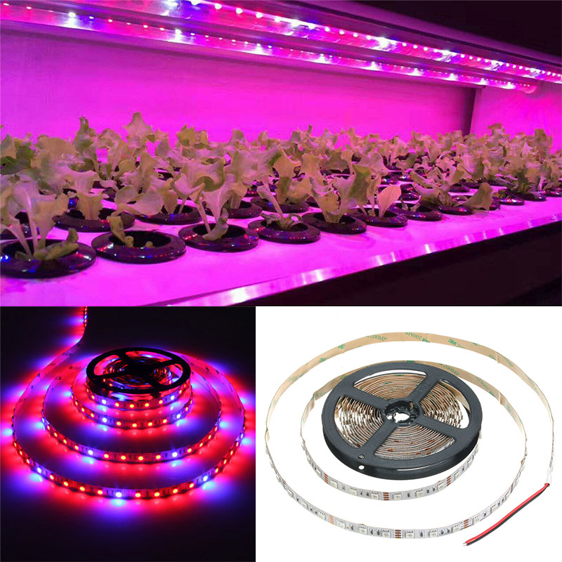 Hot Sale 4 M Led Grow Lights 240 Leds 5050 Chip Led Strip Light Ip65 Plant Growth Light For Greenhouse Hydroponic Plant Choice Materials