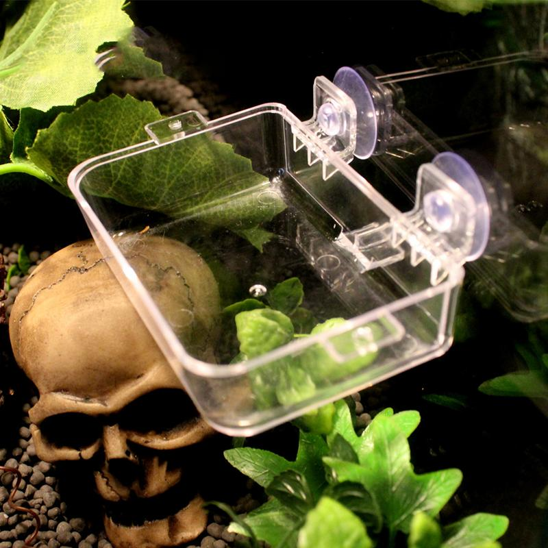 Acrylic Reptile Feeding Box Anti Escape Box Feeder Bowl For Reptile Snake Python Spider Lizard Scorpion Insects Observation Boxs