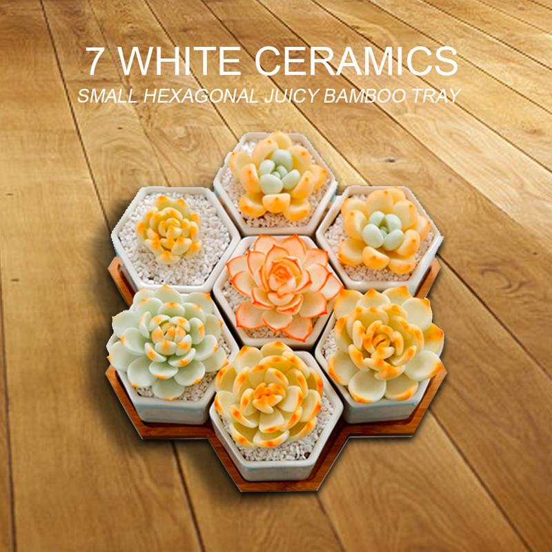 7 Pack Geometric Style Small Hex Succulent Floral Bamboo Tray