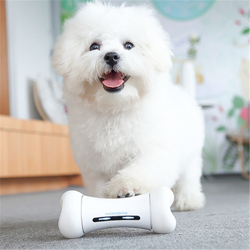 Wickedbone Smart Pet Interaction émotionnelle os jouet chien intelligent chat jouets APP contrôle peut être répondre aux émotions de l'animal jouet pour chien