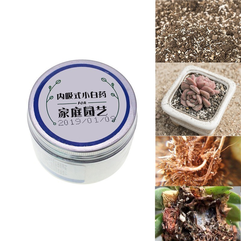 1pc Flower Plant Succulent Vegetable Insecticide Cure Fertilize White Medicine Kill Black Fly Shell Soil Scale Insects Kill