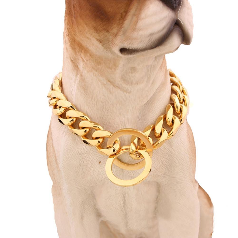 Adeeing Golden Stainless Steel Pet Dog Collar Cute Dog Necklace Pet Supplies
