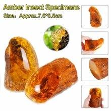 Янтарные насекомые, Скорпион, образцы камней, хрустальные образцы, имитации исцеления, коллекция украшений для дома