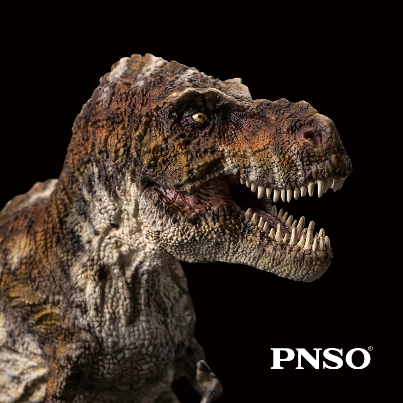 PNSO Jurassic Dinosaurs Tyrannosaurus Rex Wilson 36cm 1 35 Collection Model