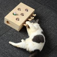 Cat Toy Chase Mouse Solid Wooden Interactive Maze Pet Hit Hamster With Five Holes Mouse Hole Catch Bite Catnip Funny Toy