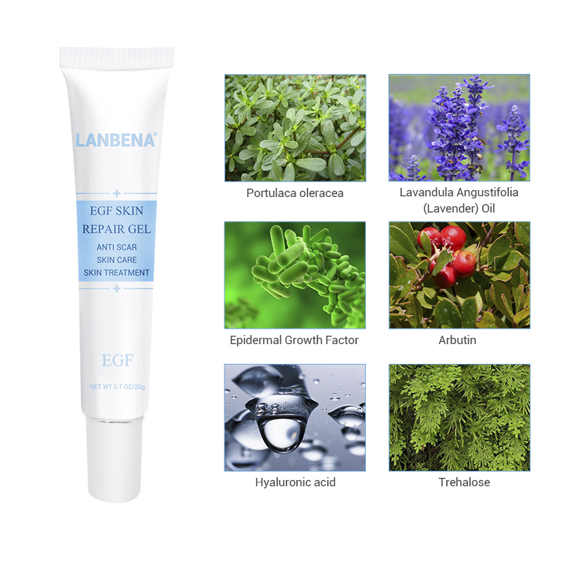 Lanbena Egf Remover Scar Cream Stretch Mark Gel Anti Acne Cream Acne Treatment Blackhead Whitening Skin Care Repair Face Cream