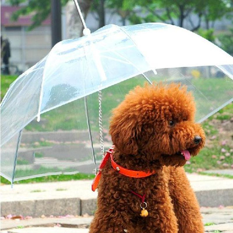 85cm Dog Umbrella With Built-in Leash PE Plastic Metal Small Dog Umbrella Rain Gear Transparent Pet Product