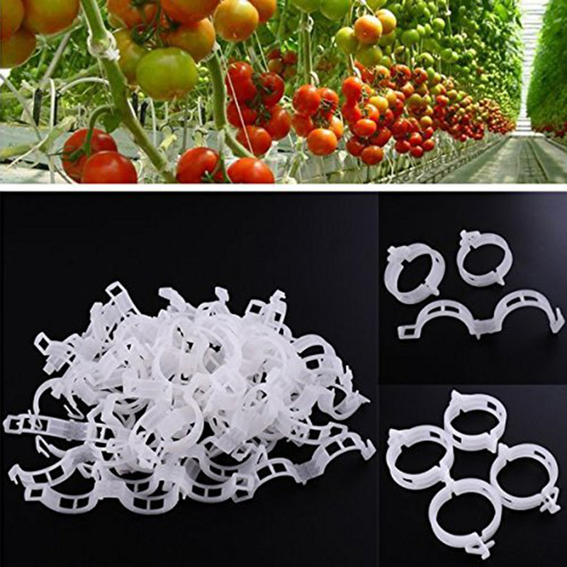 50pcs/Set Garden Plant Support Clips Rack Holder Tomato Plant Support Storage Rack Tomato Hook Garden Organizer