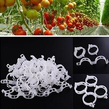 50pcs/set Garden Plant Support Clips Rack Holder Tomato Storage Hook Organizer