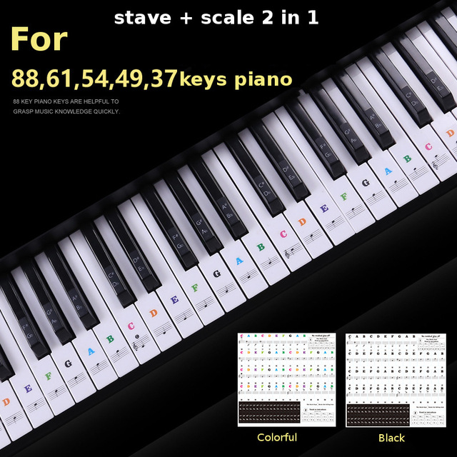 US $2 05 10% OFF|Zebra 49 54 61 88 Keys Electronic Piano Keyboard Sound  Name Stickers Key Sticker Piano Stave Music Decal Label Note Sticker-in  Piano