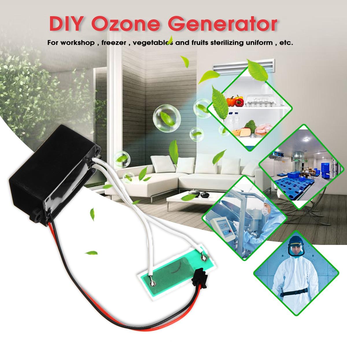 Warmtoo 12 V Schwarz 200 mgr/std DIY Ozon Generator Luft Reiniger Für Hause Luft Reinigung Desinfektion Gemüse Obst