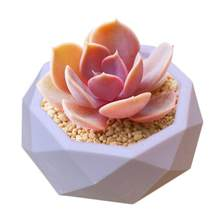 Clay Cement Silicone Mold Creative Geometric Polygonal Concrete Flower Pot Succulent Plants Vase Mold Office Home Decoration(China)