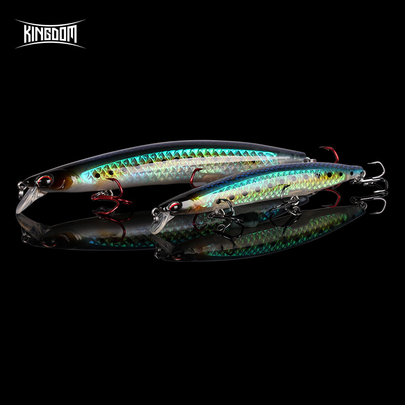 Kingdom New Professional Floating Jerkbaits Fishing Lures 95mm 125mm 140mm Minnow Good Action Wobblers High Quality Hard Baits