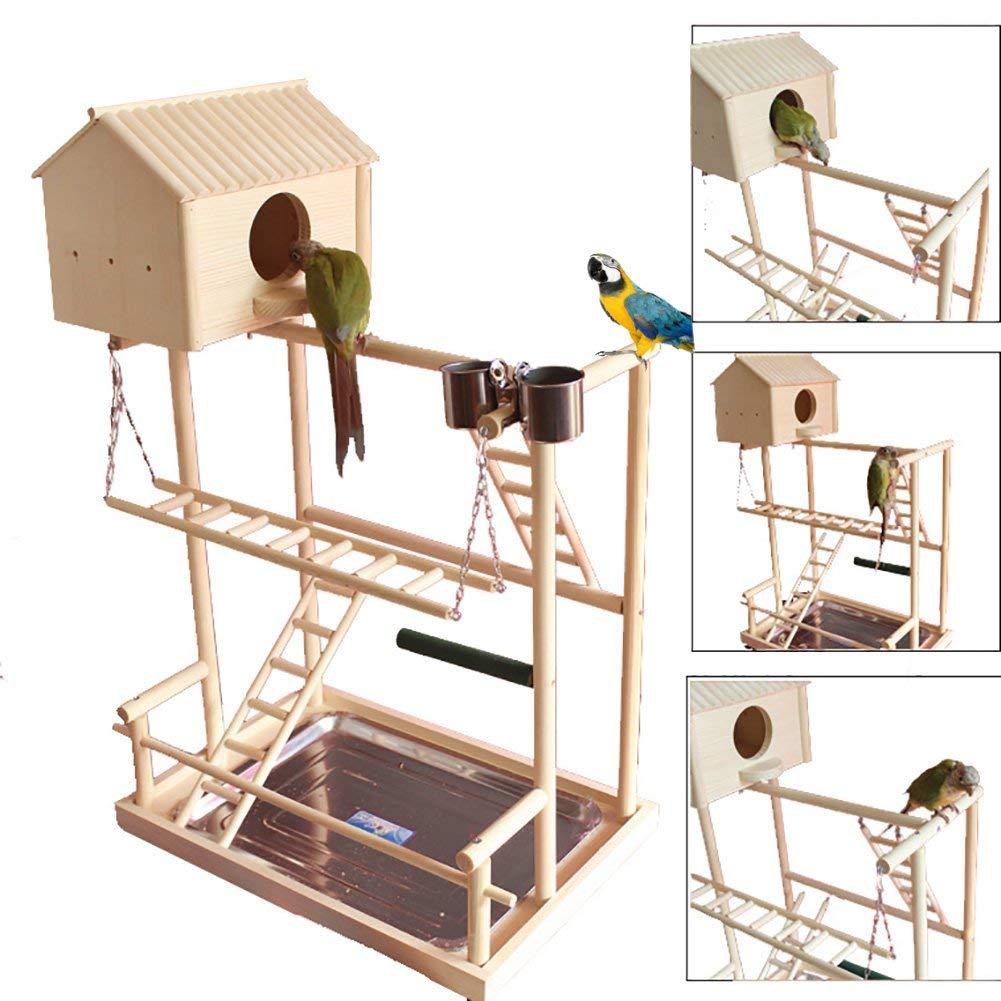 Grand oiseau Perches Play Stand Gym perroquet aire de jeux Playstand balançoire pont plateau bois escalade échelles en bois Conure perruche Macaw