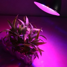 plant light LED E27 Indoor Plants Growing Lamp Plant Grow Light for Greenery Plant Flower led grow light full spectrum led plant grow light dimmable led grow lights for indoor plants flexible gooseneck plant light with timer 3 9 12h growing lamp