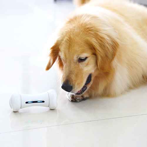APP Control Smart Pet Toys in Bone Design with Two Wheels Powered by Lithium Battery 5