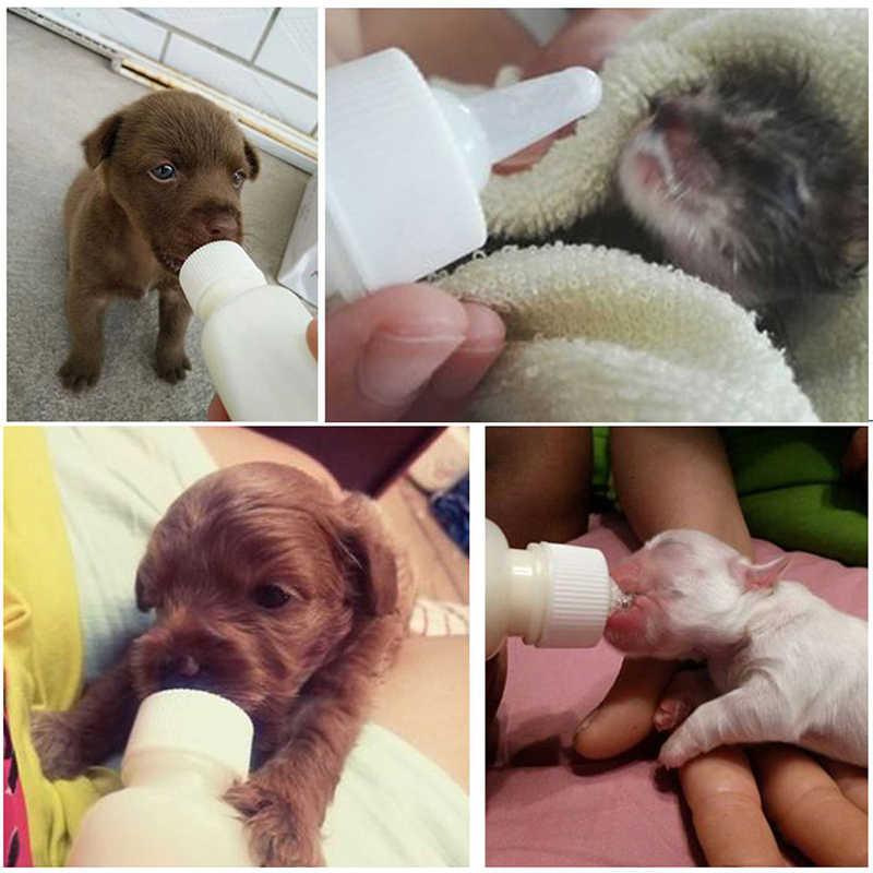 50 ML Mamadeira Pet Cat Dog Filhote De Cachorro Gatinho Bady Enfermagem Bebê Recém-nascido Mamadeira de Leite Água Alimentador Animais Cão Gato garrafa de bebida