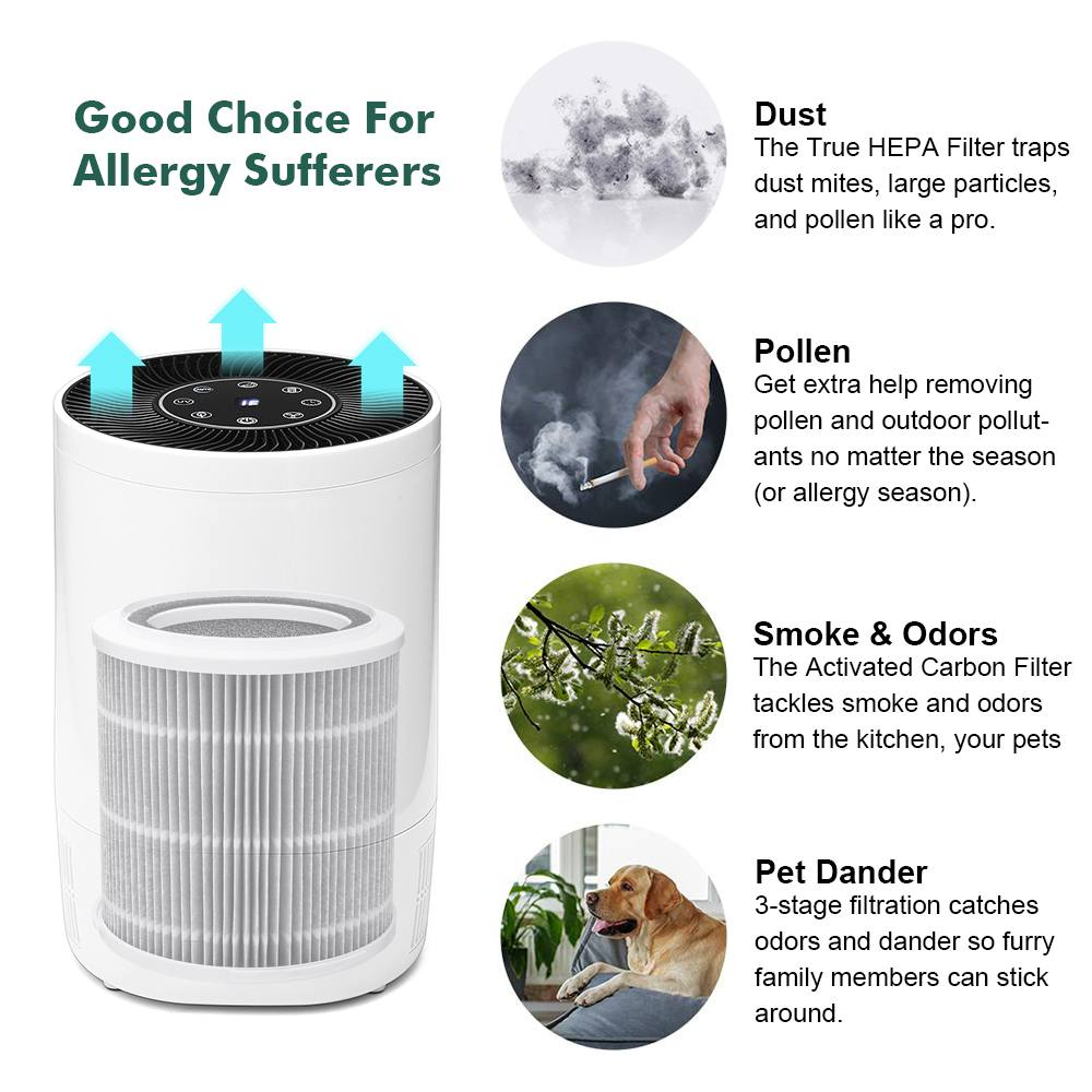 Image 2 - AUGIENB 2019 New Air Purifier Ionizer With HEPA Filter Remove Odor Smoker Dust Wash Air For Home Room Air Cleaner Filter-in Air Purifiers from Home Appliances