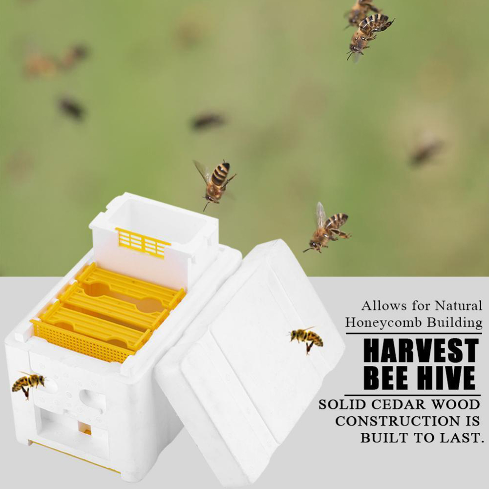 10pcs Plastic Pollen Trap Catcher Bee Hive Entrance Beekeeping Apiculture BC X
