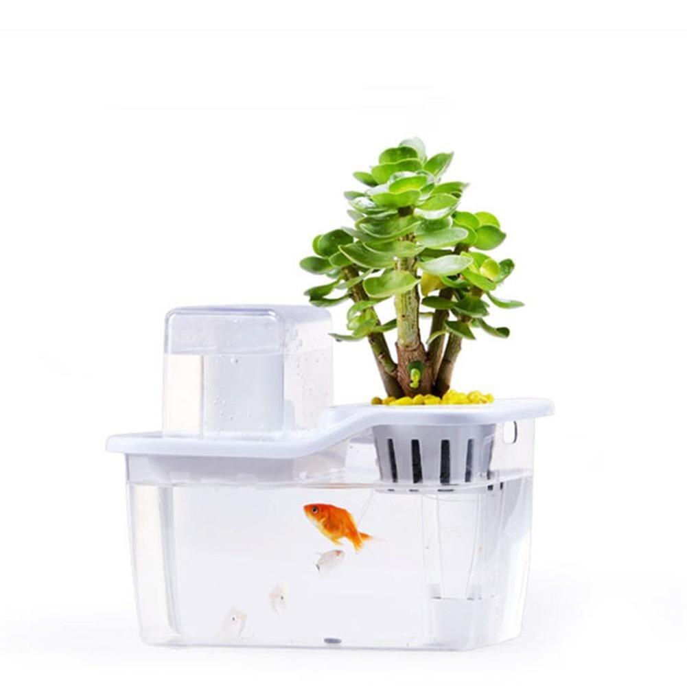 Mini aquarium aquaponique de bureau avec système de Circulation automatique pour la décoration de bureau à domicile