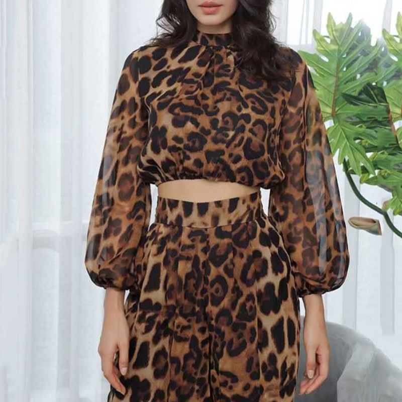 DEAT 2019 new spring and summer fashion women clothes round neck lantern sleeves high waist top