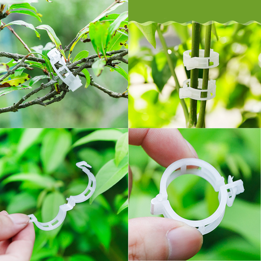 50pcs /bag Tomato Clips Trellis Garden Plant Flower Vegetable Binder Twine Plant Support Greenhouse Clip Supplies D3