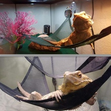 Reptile Hammock Lounger Ladder Accessories Set For Large Small Bearded Dragons Anole Geckos Lizards Or Snakes