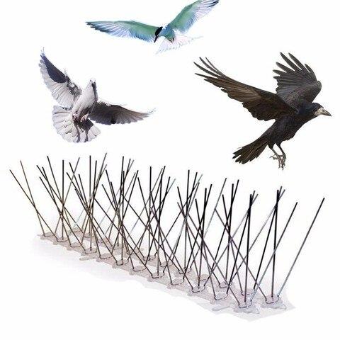 Pássaro e Spikes Pico para se Livrar de Pombos e Assustar Assustar as Aves de Pragas m de Plástico 0.5 M 7.5 Pombo Pássaro Anti Anti Pombo as Aves de Pragas Controle
