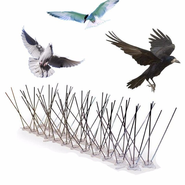 Hot 1 15PCS Pest Control Plastic Bird and Pigeon Spikes Anti Bird Anti Pigeon Spike for Get Rid of Pigeons and Scare Birds